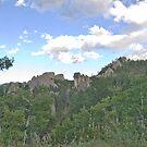 The Black Hills - South Dakota by Kent Burton