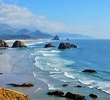 Haystack Rock in the distance by Patrick Jones