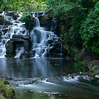 Virginia Waterfall by Neil  Pickin