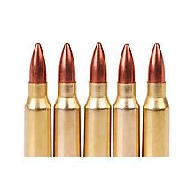 several ammo for the automatic weapons Photographic Print