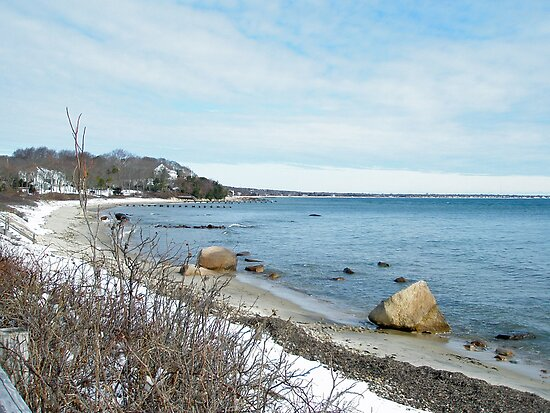 Winter Along Woods Hole Road - Cape Cod MA by MotherNature