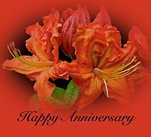 Anniversary Card - Orange Azaleas by MotherNature
