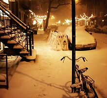 Winter Blizzard - New York City by Vivienne Gucwa