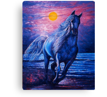 "sojie 14 wip # 3 ""Spirit of Freedom"" Canvas Print"