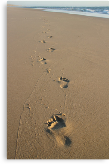 Footprints by Samantha Higgs