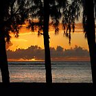 Sunset. Flic en Flac beach. by Irina Chuckowree