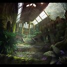 Abandoned Building by Conrad C