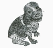 Cocker Spaniel in Pencil by Jane McDougall