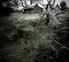 Cottage of a golden era #1 by Mark Elshout