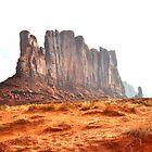Desert Beauty by TitusXavier