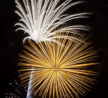 Brilliant, Dazzling Fireworks by Kenneth Keifer