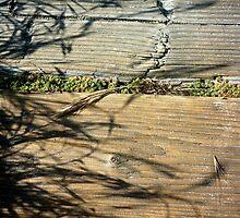 Wooden Walkway by Karirose