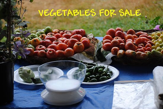 Vegetables For Sale by Jonice