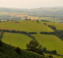 The Malvern Hills by Catherine Ames