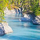 Verdant Creek - Vermillion Crossing - Kootenay National Park - BC by Yannik Hay