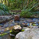 Woolgoolga Creek by Normf