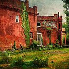 Abandonded Building Near Downtown Toledo, Ohio by Bob Dilworth