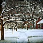 Winter Has Its charms by Bob Dilworth