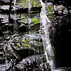 Trickle by morealtitude