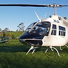 The JetRanger and The Robinson by PrecisionHeli