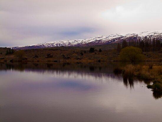 South Island Lake - Near Ettrick  by Paul Davis