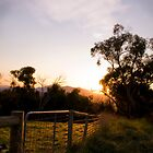 'The View' - Gate at Sunrise by Daniel Berends