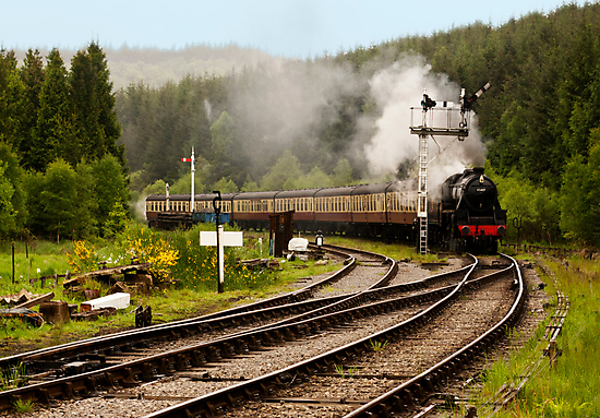 The Train Arriving by Trevor Kersley
