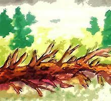 Fallen tree #2, watercolor by Anna  Lewis