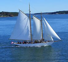 A Beautiful Day to Sail by MaryinMaine