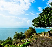 Sea of Galilee by petitejardim