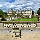 Luxembourg Palace in Paris, France by Ivo Velinov