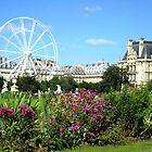 Jardin des Tuileries - Paris by Kim North