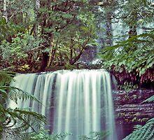 Tasmania's Russell Falls—Kodachrome 64 by Brett Rogers