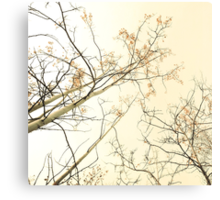 forest tapestry Canvas Print
