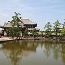 Nara, Japan by Nasko .