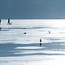 Northern Lights II by Photofreaks