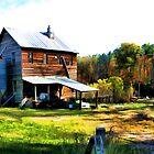 Price's Mill - Upstate South Carolina by Randall Faulkner