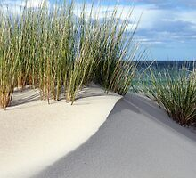 Another sand dune - Marion Bay Tasmania by Nigel Butfield