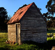 the old shed out the back,highlands,Tasmania by Kip Nunn