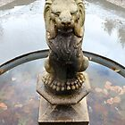 Lion in the Water by Gingersnaps1984