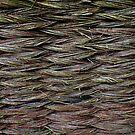 Knitted Fence in Etara, Bulgaria by Nasko .
