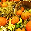 Fall Autumn Harvest - Pumpkins, Gourds & Squash in Wooden Bushels & Baskets by Chantal PhotoPix