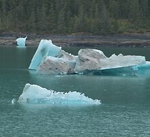 Ice bergs coming up Tracy Arm..... by DonnaMoore