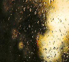 Through a Rainy September Window by Mike  Waldron