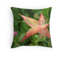 Coming Change 2 Throw Pillow