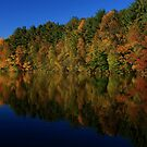 Autumn Reflection of Colors by Karol Livote