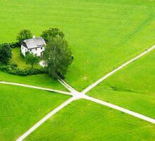 Green heart by Ivo Velinov