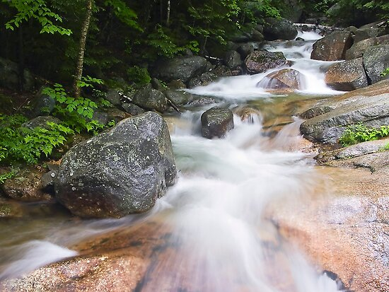 Above The Flume, Franconia Notch, New Hampshire by Kenneth Keifer