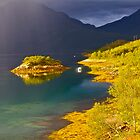 7 ?????. Lofoten Wonders (2011) by Brown Sugar . Views (590) favorited by (2) thank you by © Andrzej Goszcz,M.D. Ph.D