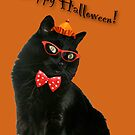 Halloween Card - Black Cat Ready to Party by MotherNature